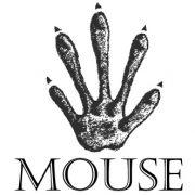 Mouse Footprint