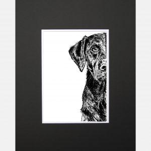 LE print labrador black