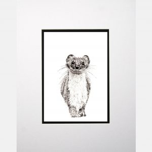 LE print stoat white