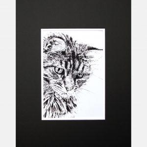 LE print cat black