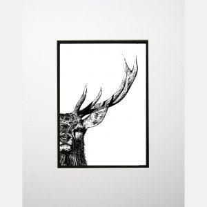 LE print majestic stag white copy