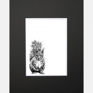 LE print red squirrel black