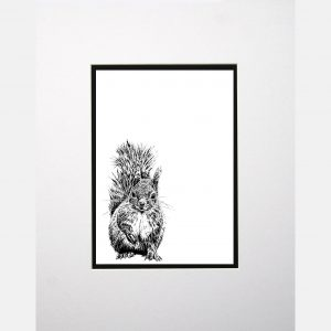 LE print red squirrel white