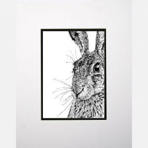 LE print shy hare white