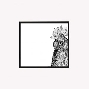 Chicken 10 x10 print white - Copy