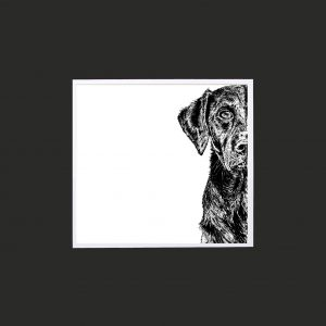 Labrador 10 x 10 print black