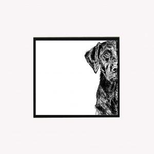 Labrador 10 x 10 print white