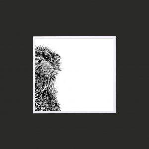 Otter 10 x 10 print black