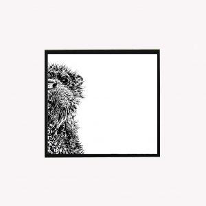 Otter 10 x 10 print white