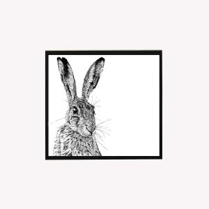 Shy Hare 10 x 10 print white