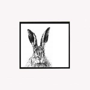 Solemn Hare 10 x 10 print White