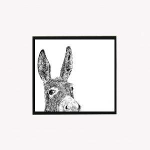 Donkey 10 x 10 print white