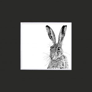 Shy Hare 10 x 10 print bed