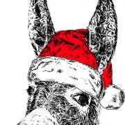 Donkey Christmas small