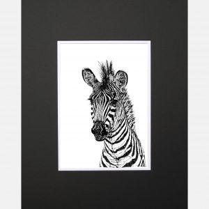 LE zebra black